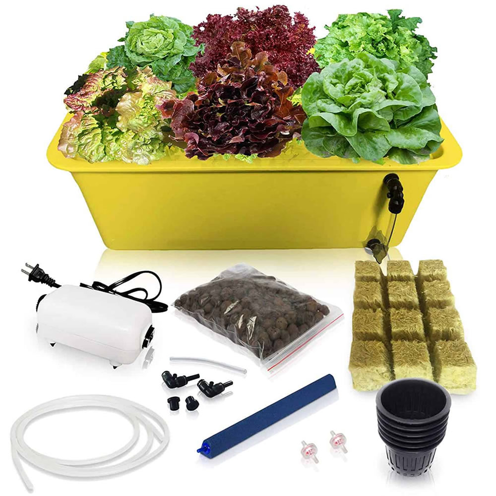 where to buy deep water culture hydroponic system online